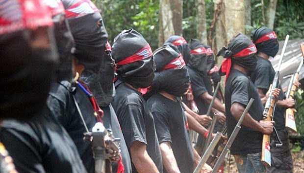 Komisi I DPR: OPM Sudah Langgar HAM, Lebih Cenderung Teroris
