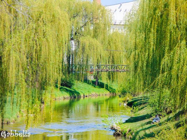 Râul Cibin, sibiu