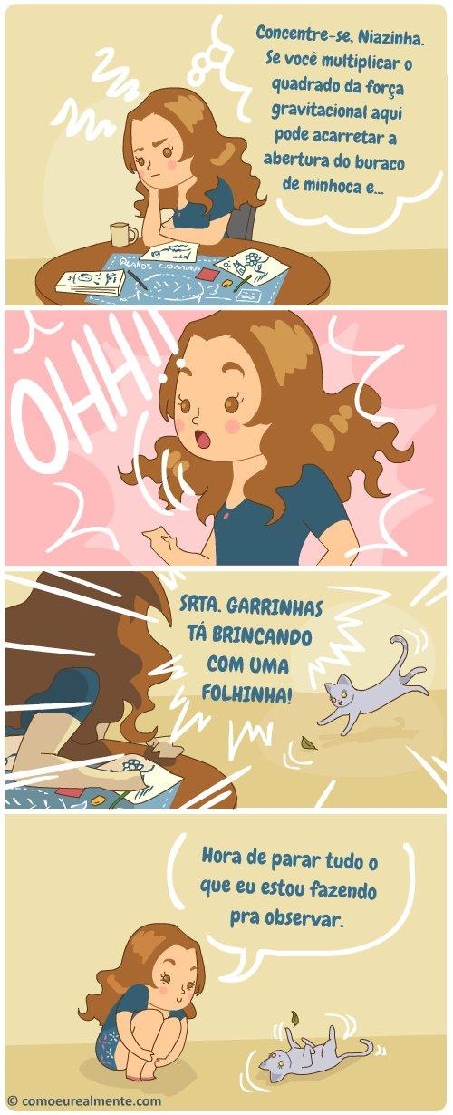 Quais realmente são as minhas prioridades de vida, sendo uma dona de gatos