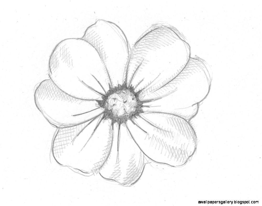 Diy Flower Garden Ideas Pinterest