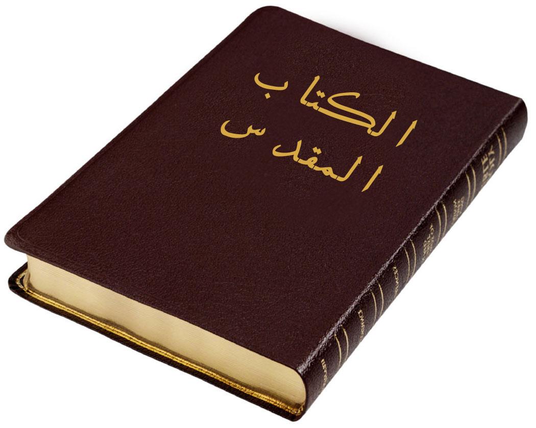 تحميل كتاب المكدس في الكتاب المقدس