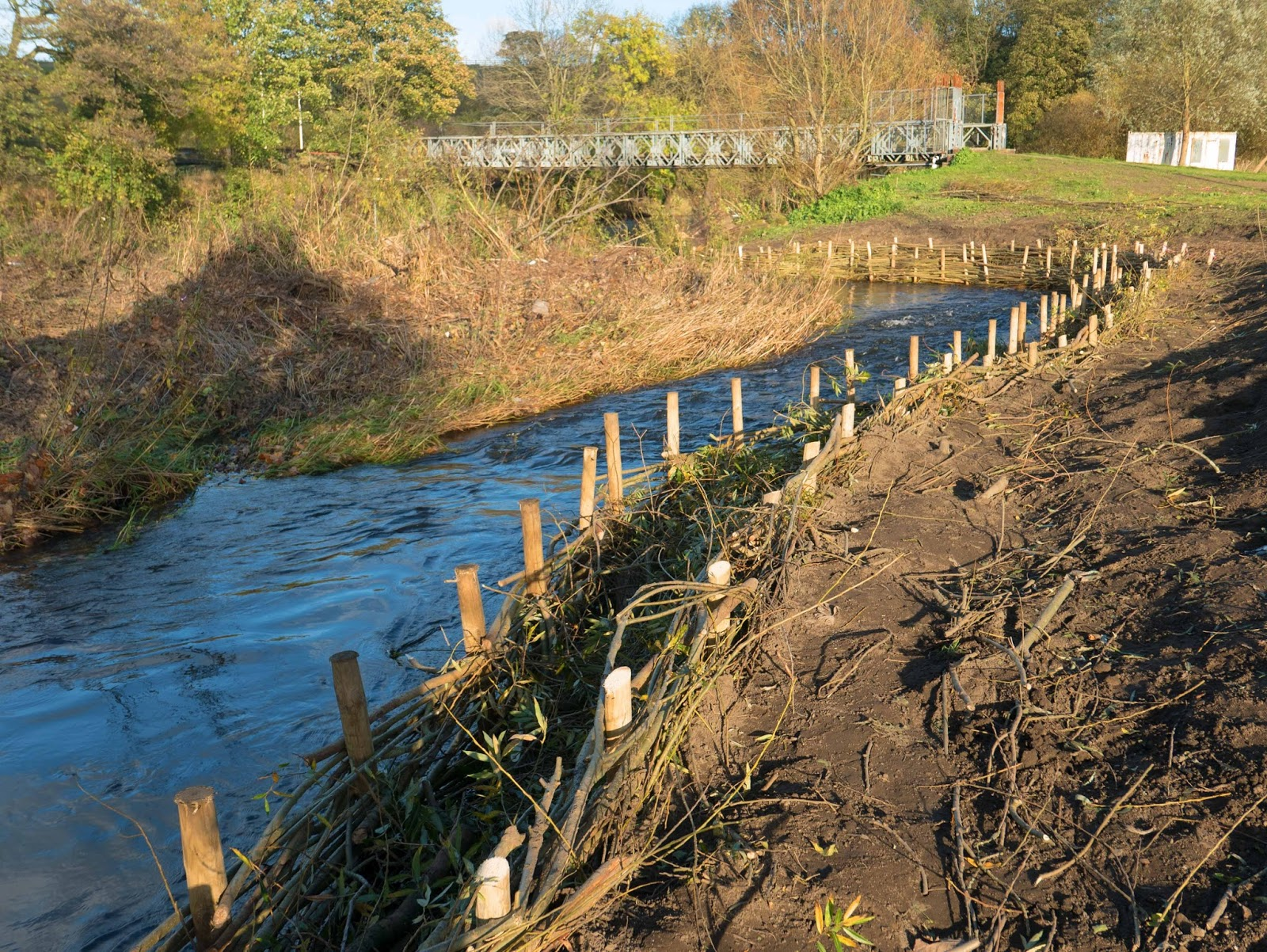 Spiling on the River Aire: 24th October 2017