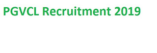 PGVCL Recruitment 2019-at www.pgvcl.com 01 Chairperson Vacancies   Application Form
