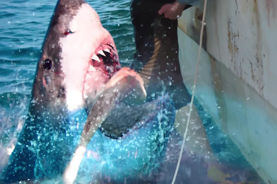 "Teaser trailer de ""Medo Profundo 2"" traz o terror aquático para águas brasileiras"