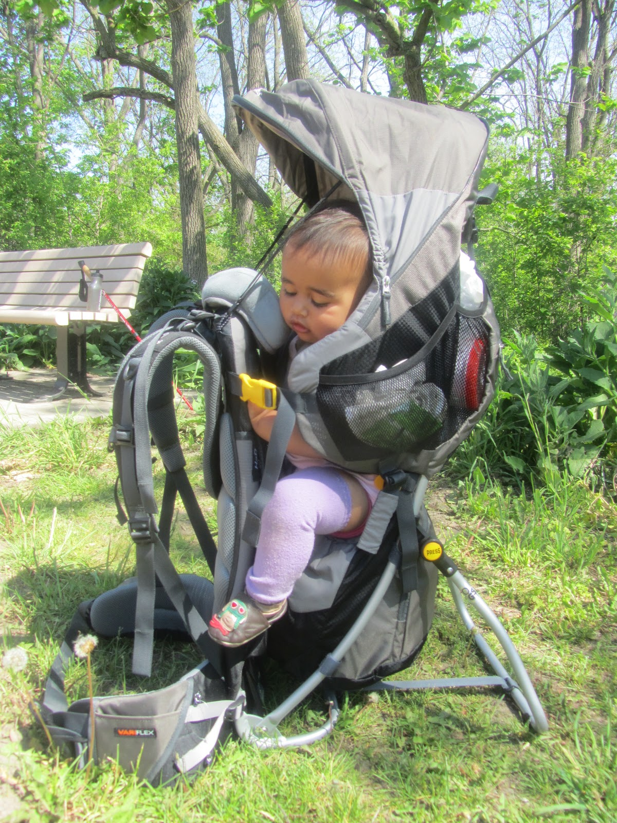 Hiking Boots And A Carrier Gear Review Deuter Backpack