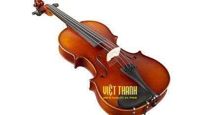 Cây đàn violin bán chạy tại công ty Việt Thanh