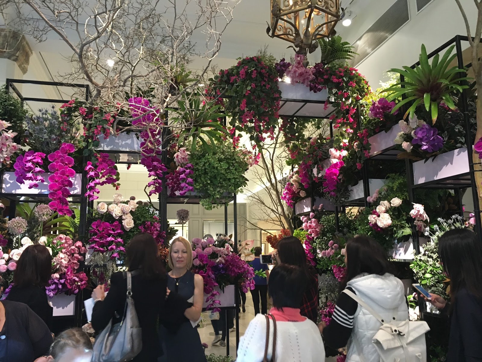 Urban Flower David Jones Sydney 2016 Flower Show