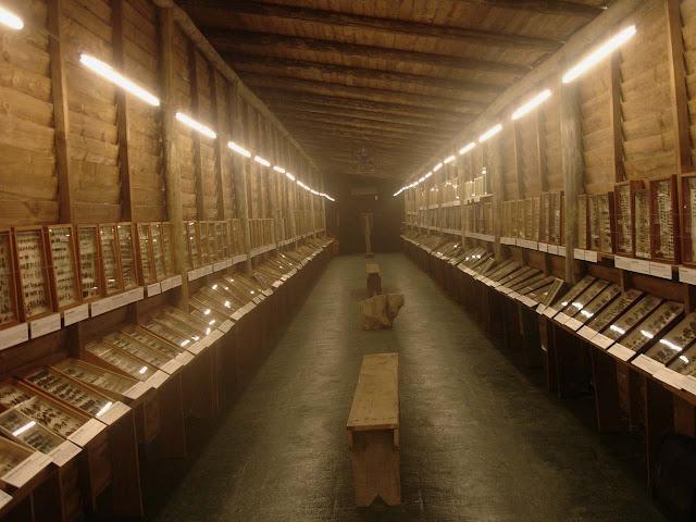 Punta del Leste Museu