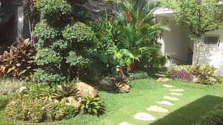 Jasa Tukang Taman Surabaya Jawa Timur C