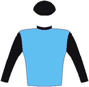 JUNIPER SPRING - Jockey Silks - Horse Racing