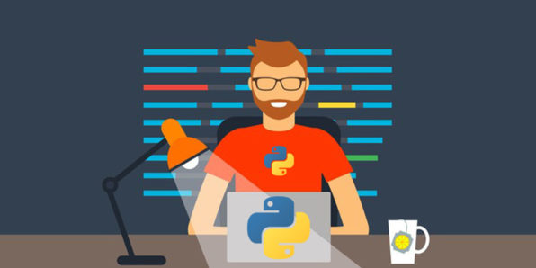 Python for Programmers Course - Discount Coupon