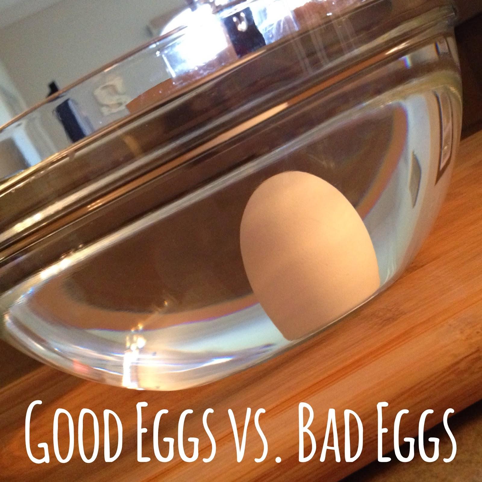 Dear El Em Good Eggs Vs Bad Eggs