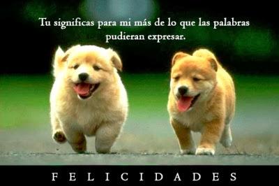 felicidades perritos