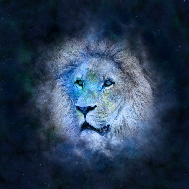 significado ter venus em leao astrologia