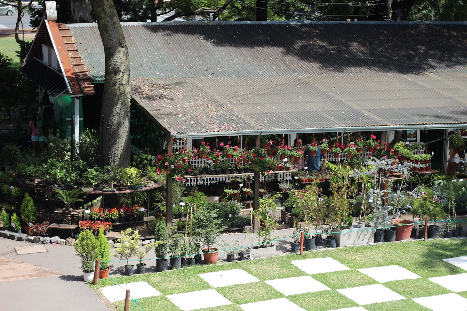 vivero jardin japones