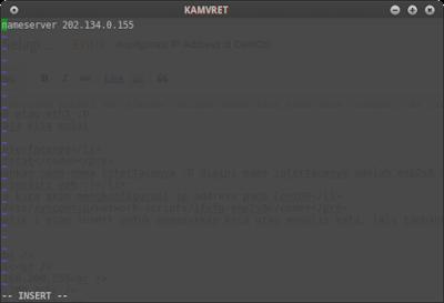 Masukkan dns nya dengan format nameserver 202.134.0.155 lalu simpan