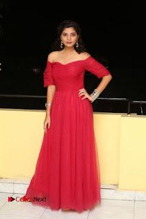 Actress Bindu Pictures in Red Dress at Attarillu Movie Press Meet  0283