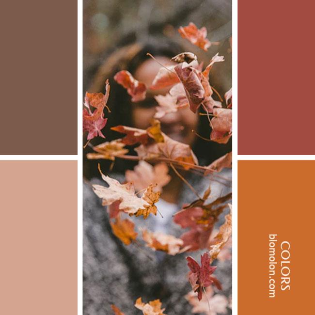 variedad_en_color_combinacion_29