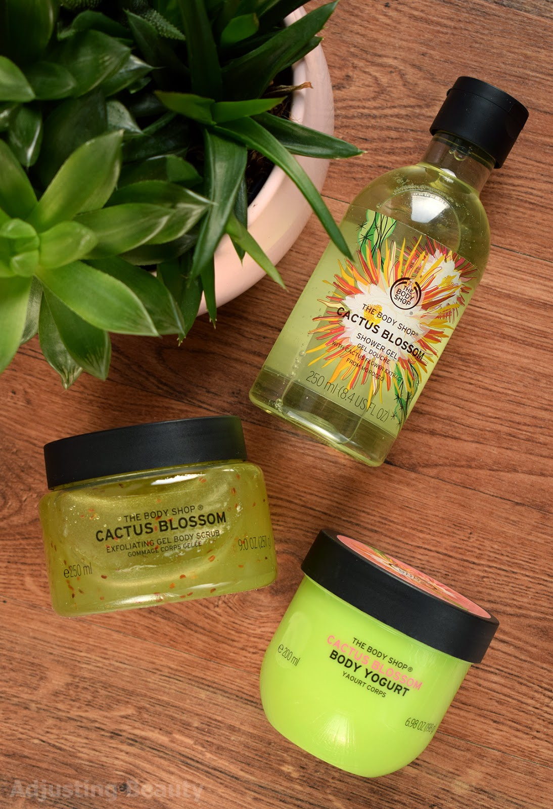 Review: The Body Shop LE Cactus Blossom - Shower Gel