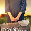Amish Wanderer by LauraV. Hilton