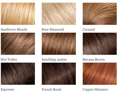 Simple hair color chart offerings from L'oreal