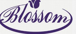 Bursa Lowongan Kerja Lampung 2019 - Salon Blossom