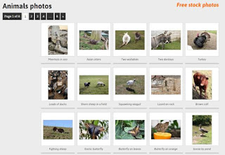 Six Sites Provide You Legal Free Images - Photogen