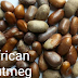 Weightloss Benefits Of African Nutmeg