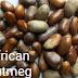 Weightloss Benefits Of African Nutmeg