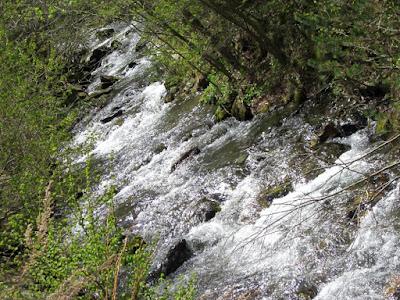 Rio Segre en la Cerdanya