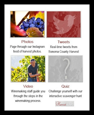 La Crema Winery Harvest Live App