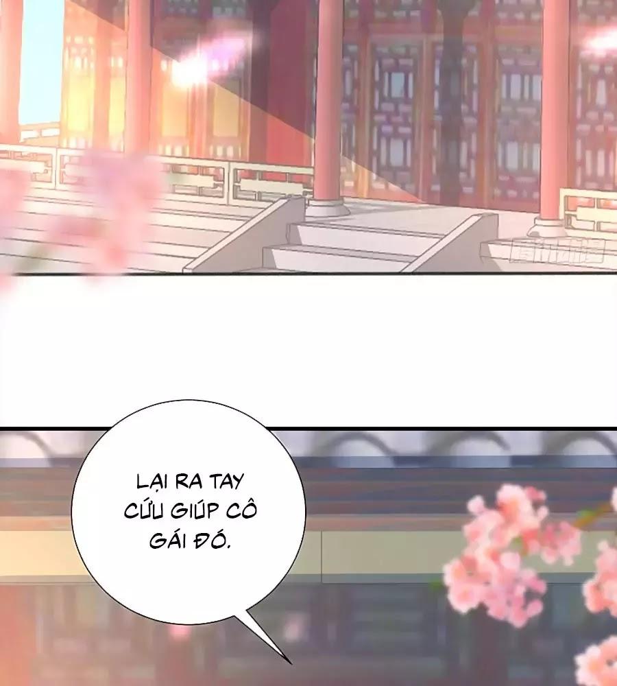 Quyền Phi Chi Đế Y Phong Hoa chap 11 - Trang 24