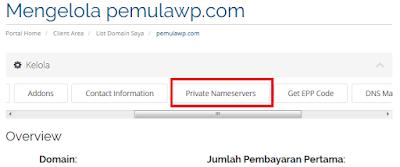 Cara Setting Private Nameserver di Plesk