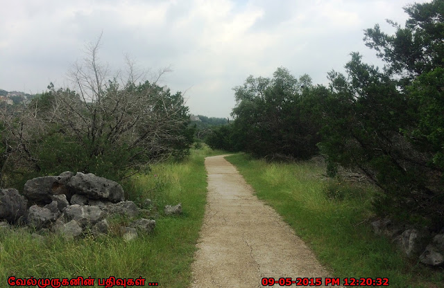Stone Oak trail