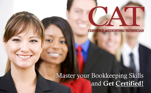 the road to becoming a certified accounting technician (cat) | my ...