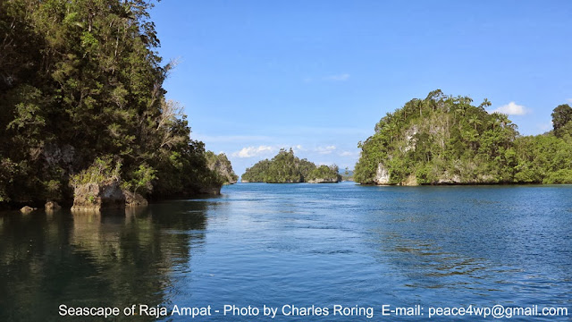 Pulau-pulau batu di Teluk Kabui, Kepulauan Raja Ampat