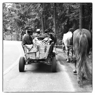 Szekéren utazó emberek és lógós lovak egy erdei úton Erdélyben