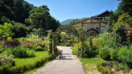 Out of Seoul, Part 1/3 - Garden of Morning Calm