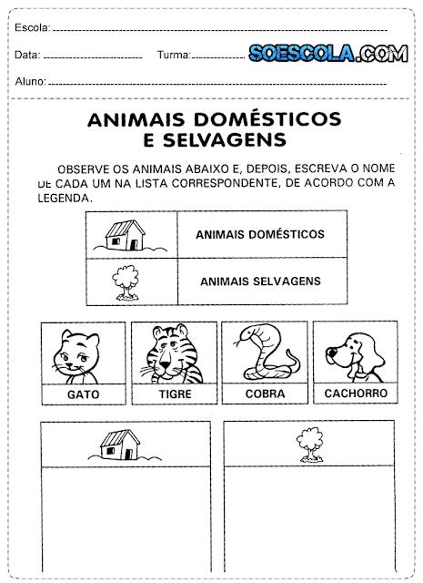 Atividade de ciências 1° ano os animais