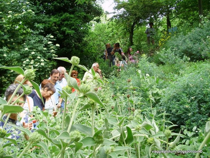 Giardini del Casoncello, sentiero degli aromi