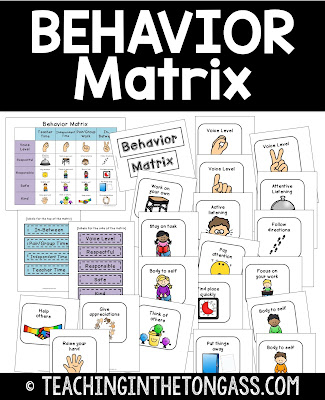pbis behavior matrix