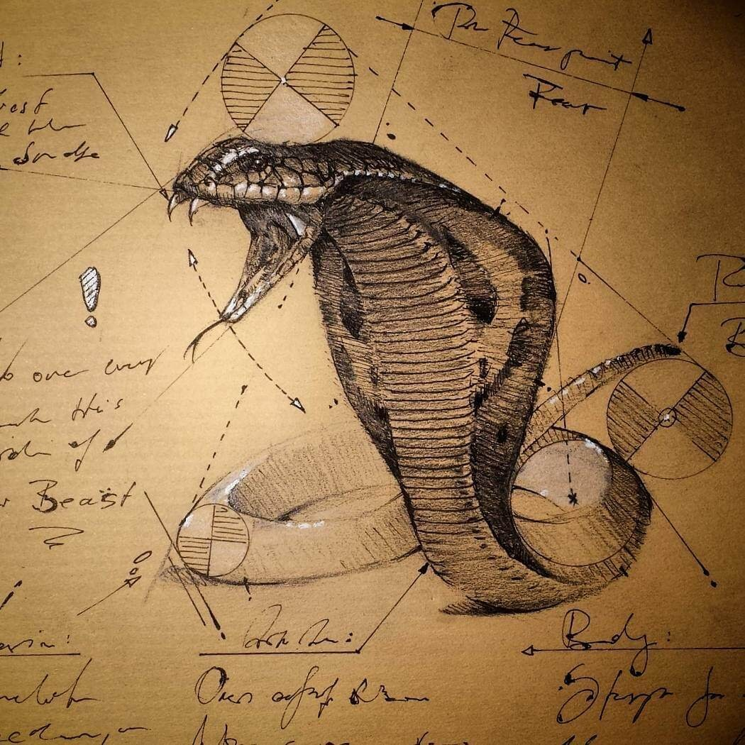 08-King-Cobra-Snake-psdelux-Geometric-Animal-Sketches-and-1-Alien-www-designstack-co