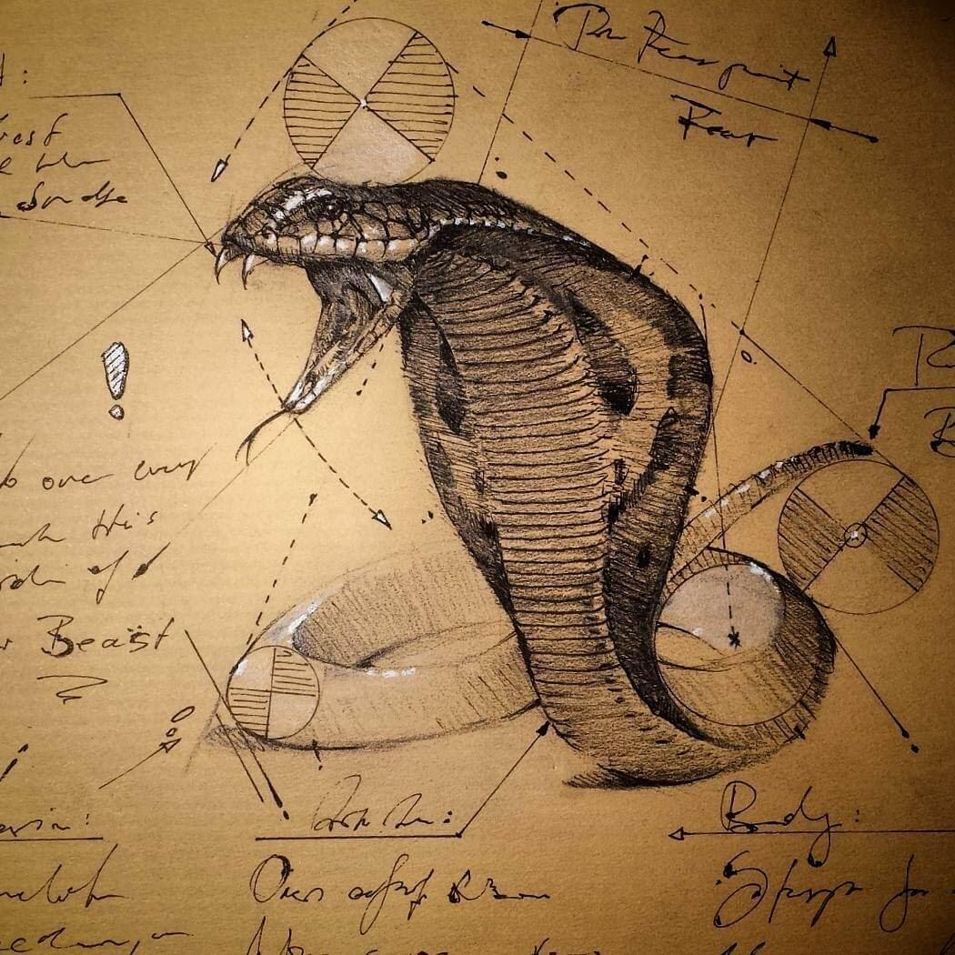 08-King-Cobra-Snake-psdelux-Geometric-Animal-Sketches-and-1-Alien-www-designstack-co