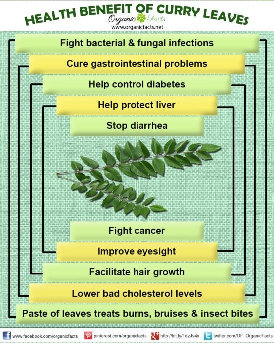 Sabah Snake Grass – A cure for Cancer and Other Diseases   AUNTY