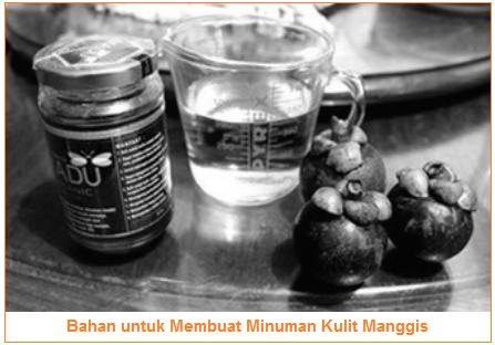 Bahan untuk Membuat Minuman Kulit Manggis