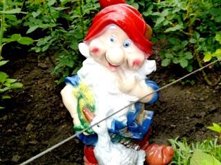 домой огородник