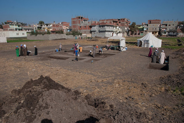 'Monumental' building complex discovered at Qantir in Egypt's Nile Delta