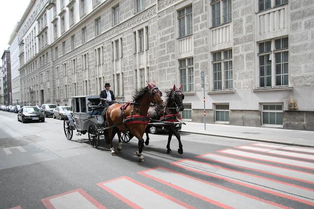 Carrozza con cavalli-Vienna centro