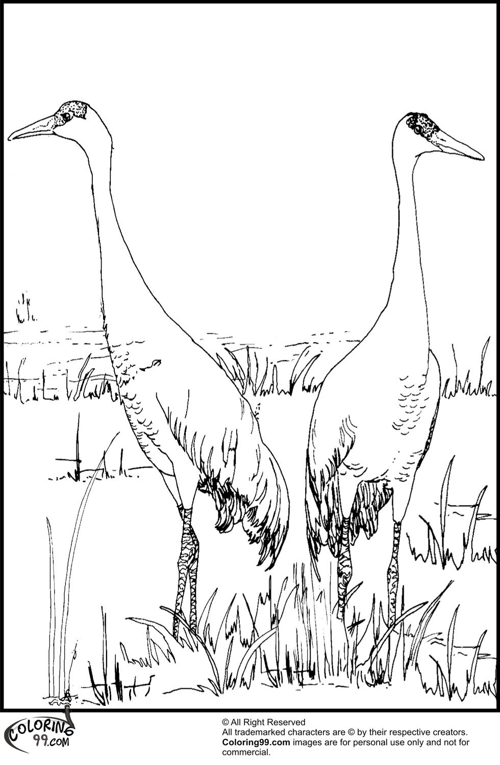 Stork Coloring Pages Team Colors