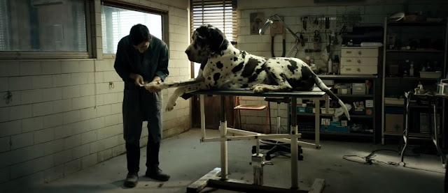 [Cine] Crítica: 'Dogman' (2018), de Matteo Garrone
